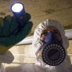 How much does an asbestos survey cost?