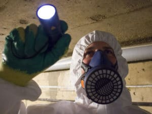 What is the cost of an asbestos survey?