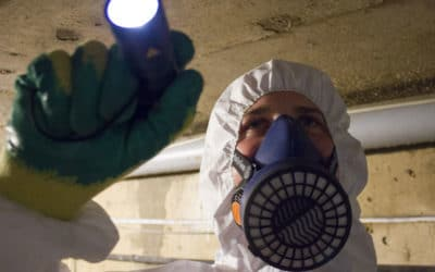 How much does an asbestos survey cost in 2021?