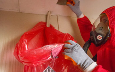 Asbestos Insulating Board Removal Cost Guide for 2021