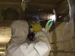 asbestos removal and surveys