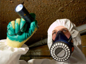 Asbestos Surveys 1