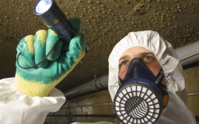 Guide to Asbestos Respiratory Protective Equipment & Face Fit Testing