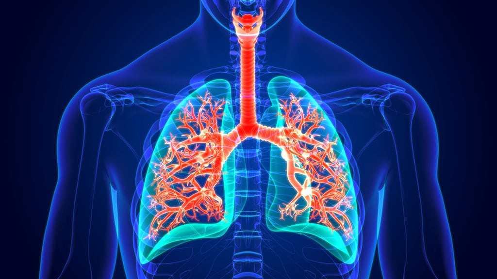 Asbestos Health Effects 1