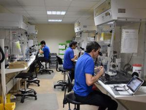 asbestos sampling laboratory
