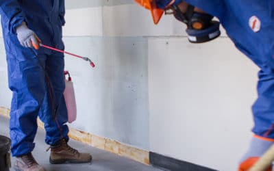 Asbestos Floor Tile Removal Cost Guide for 2021