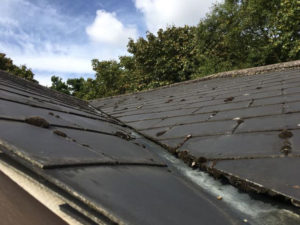 Asbestos Roof Tile Removal Cost Guide for 2021 1